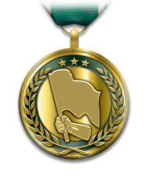 Fichier:Medals leadhomerunmedal.png